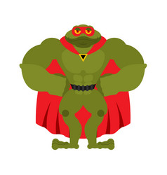 Frog superhero super toad in mask and raincoat vector