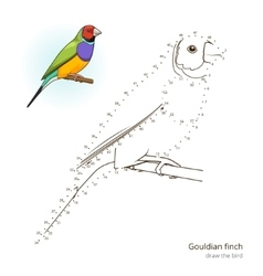 Gouldian finch bird learn to draw vector image vector image