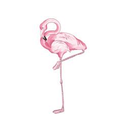 pink flamingo realistic hand vector image