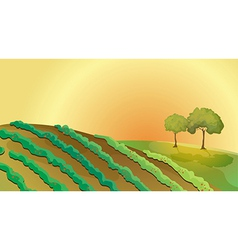 A farm in the hills vector image