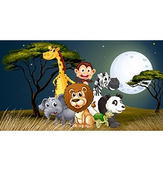 A group of playful animals under the bright vector image vector image