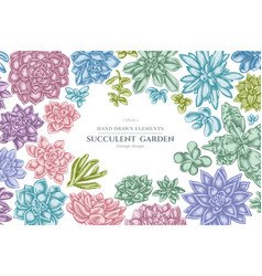 Floral design with pastel succulent echeveria vector