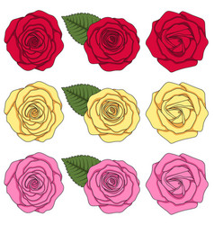 set of color with roses and leaves vector image