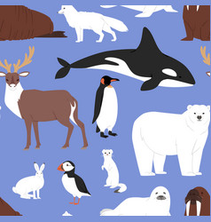 arctic animals cartoon polar bear vector image