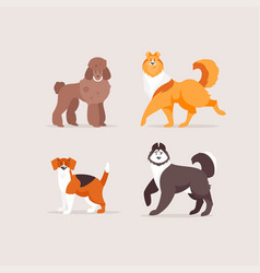 collection of dogs vector image