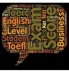 ESL Exams A Teacher s Guide text background vector image