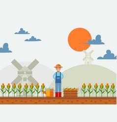 farmer in cornfield simple vector image