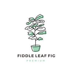 Fiddle leaf fig logo icon vector
