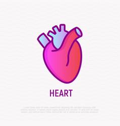 Human anatomical heart thin line icon modern vector