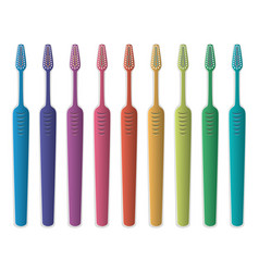 set colorful toothbrushes vector image