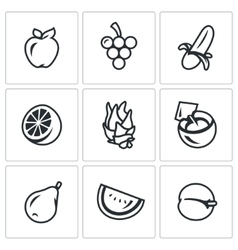 Set of Fruits Icons Apple Grape Banana vector image