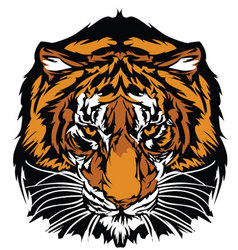 tiger head graphic mascot vector image