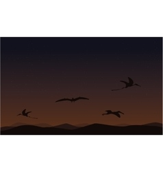 pterodactyl on sky landscape of silhouettes vector image vector image