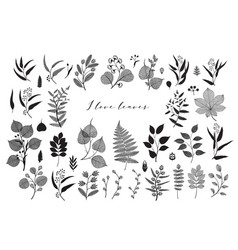 big set of branches and leaves fall spring vector image