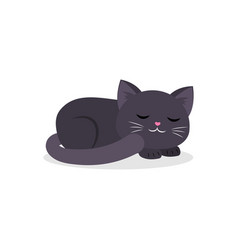 Black cute cat sleeping curled up in a ball vector