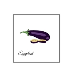 Eggplant whole and sliced on a vector