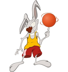 Rabbit the basketball player vector