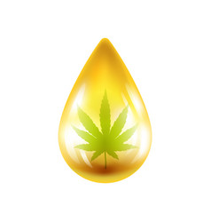 Realistic drop of oil with hemp vector
