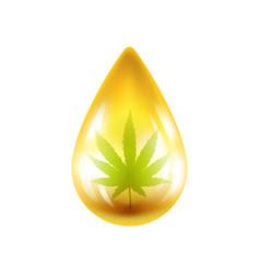 Realistic drop oil with hemp vector