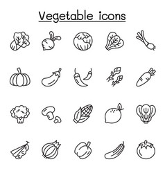 vegetable icons set in thin line style vector image