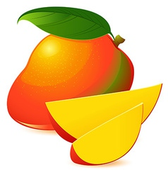 Icon of Ripe exotic mango with two slices vector image vector image
