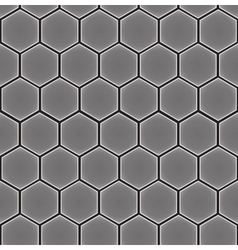 hexagon cell background vector image vector image