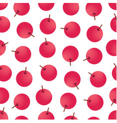 seamless pattern with red berries vector image