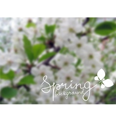blurred spring background vector image