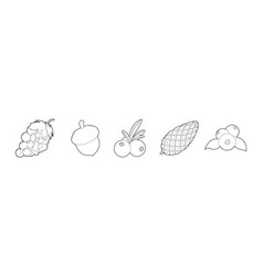 fruits icon set outline style vector image
