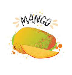 hand draw mango yellow ripe vector image