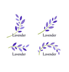 lavender icons set violet leaves and green branch vector image