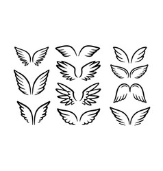 wings collection black icon vector image