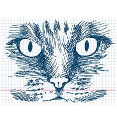 Hand drawn cat face vector image vector image