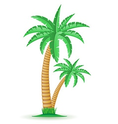 palm 04 vector image vector image