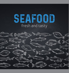 border template hand drawn fish blackboard vector image