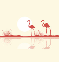 flamingo on riverbank scene silhouette vector image