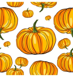 hand drawn pumpkins vector image