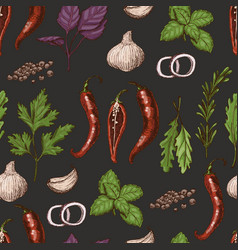 seamless pattern with spices and herbs vector image