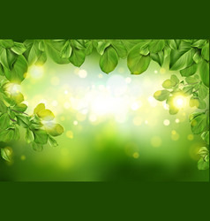 tree leaves border on green defocused background vector image
