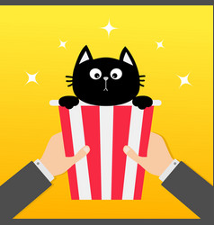 Two human businessman hands holding popcorn box vector