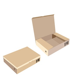Opened and closed brown boxes vector image