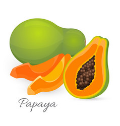 Papaya whole and half papaw or pawpaw ediable vector