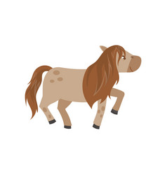 Beautiful brown horse pony on vector