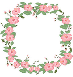 beautiful hibiscus flower frame and background vector image