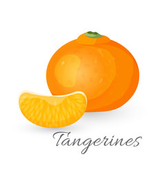 Tangerine tropical fruit isolated on white vector