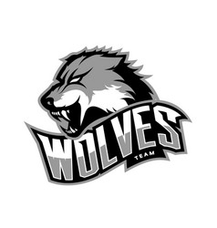 furious wolf sport logo concept isolated on vector image vector image