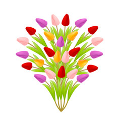 beautiful floral bouquet of tulips in the form of vector image