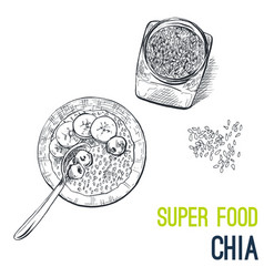 Chia seeds super food hand drawn sketch vector
