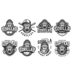 vintage sport teams logotypes set vector image
