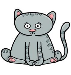 Cat or kitten animal character vector